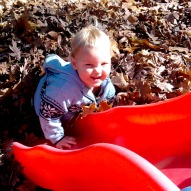 Sliding Into Leaves