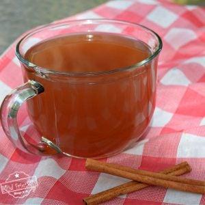 hot wassail drink