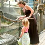 Fun things to do with kids in CT reviewed by a mom and kids, Kid friendly things to do in CT
