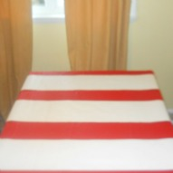 A Cat in The Hat Table Cloth Idea for Your Party (So Fun!)