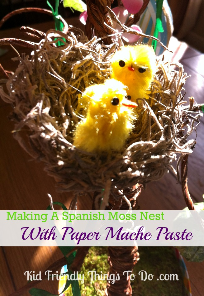 How to Make a Spanish Moss Bird's Nest Craft