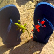 Design Your Own Flip Flop Craft – A Kid Friendly Thing To Do