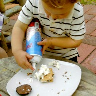 Smores, A fun thing to do with kids, kid friendly recipe, Smores recipe, Smores idea, fun things to do with kids in Connecticut, kid friendly things to do in Connecticut