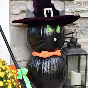 Halloween black cat pumpkin