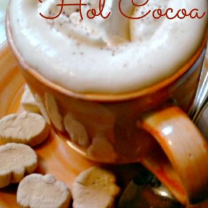 Pumpkin Spice Hot Cocoa Recipe. KidFriendlyThingsToDo.com