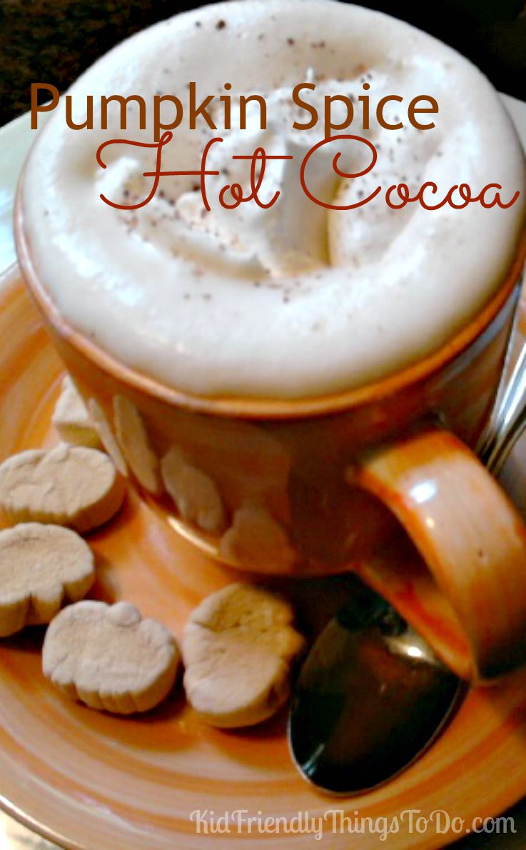 Pumpkin Spice Hot Cocoa Recipe.