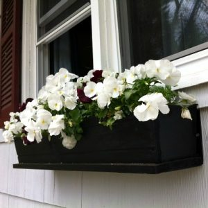 Window Boxes Are A An Easy Way To Add Curb Appeal – Kid Friendly Things To Do .Com