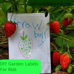 DIY garden label for kids