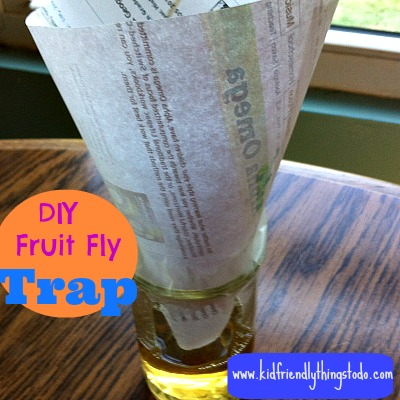 DIY Fruit Fly Trap – Kid Friendly Things To Do