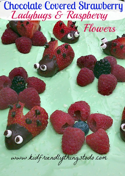Chocolate Covered Strawberry Ladybugs & Raspberry Flowers – Kid Friendly Things To Do