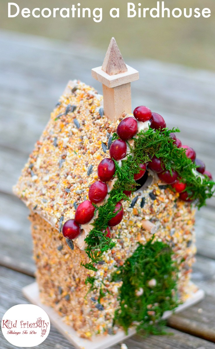 Decorating birdhouses with edible bird seed glue craft birdhouses and decorating ideas forumfinder Gallery