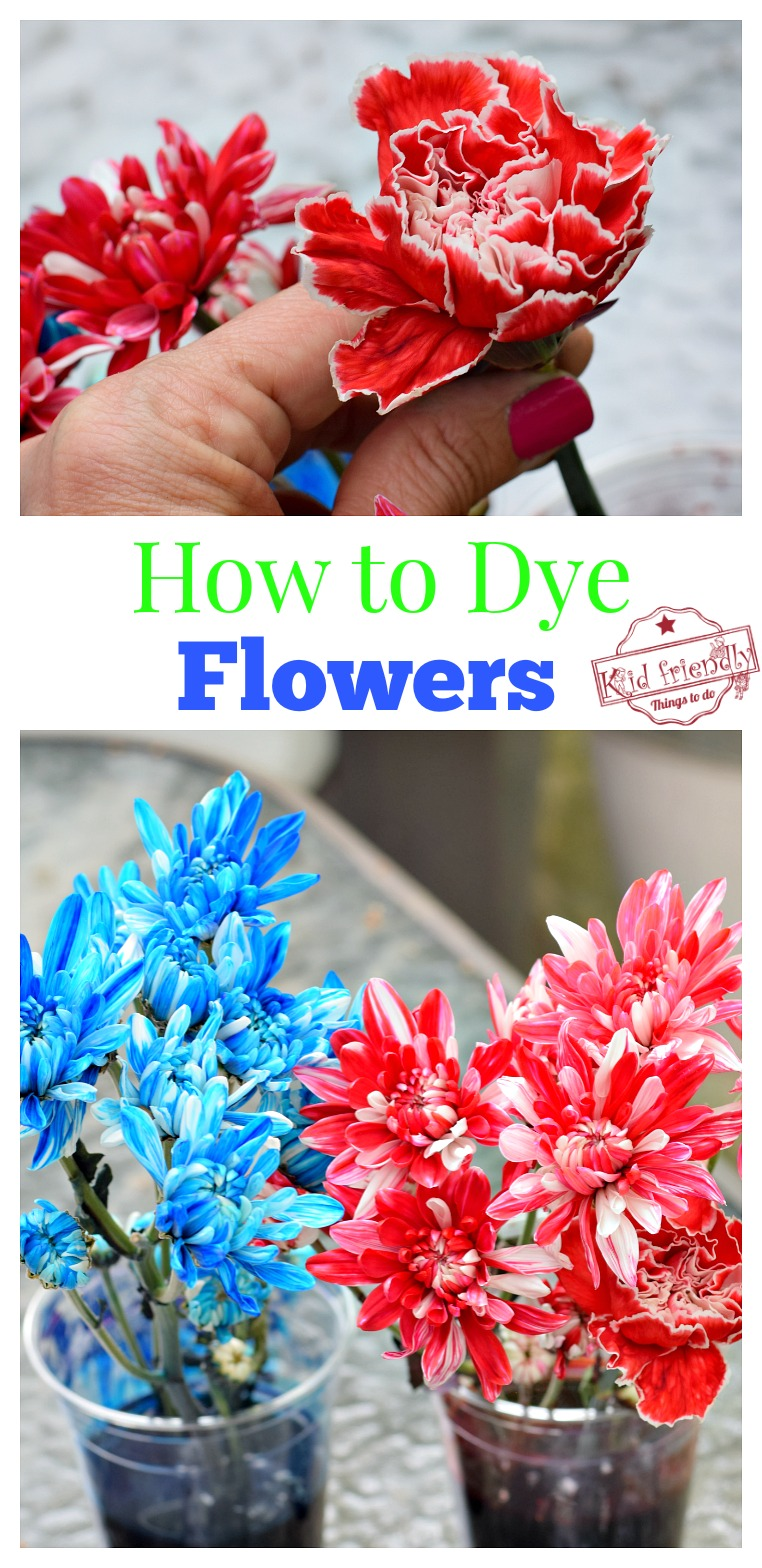 dye flowers with kids