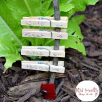 Fairy Garden Ideas for kids - KidFriendlyThingsToDo.com