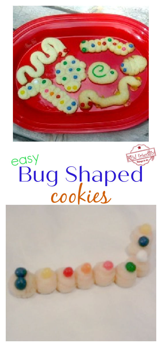 bug turtle and snake shaped cookies